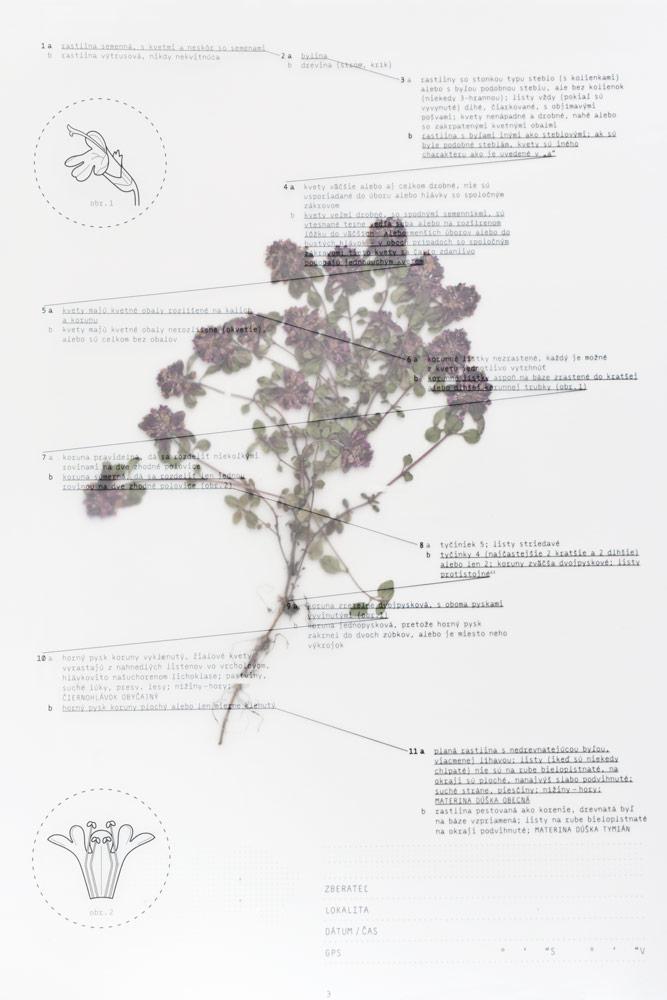 Herbarium-06